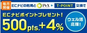 Pexキャンペーン